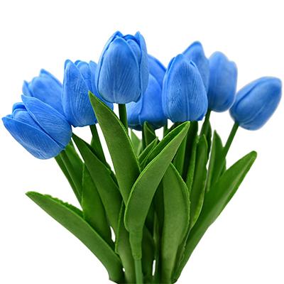 tulipanes azules